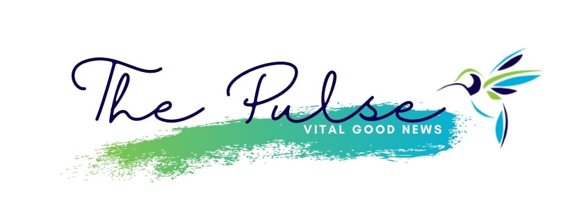 The County Foundation e-news The Pulse - Prince Edward County Community Foundation