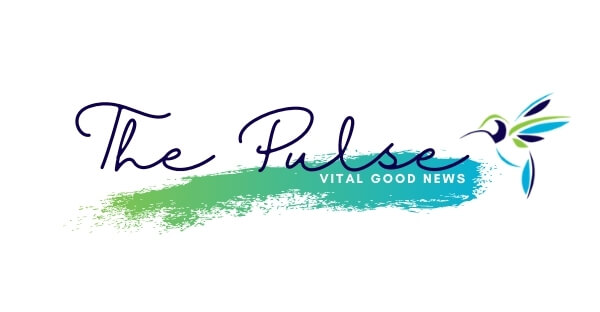 The COUNTY Foundation - The Pulse news - Prince Edward County Community Foundation